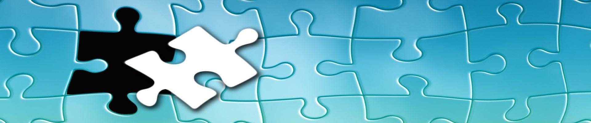 Puzzel, Symbol der Kompetenz